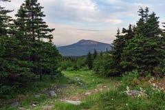 Wege zwischen Wäldern und Bergen der Süd-Urals Sommer in den Bergen Ansicht von den Bergen Die Natur des Sou Stockfoto