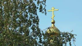 Wegen der Birke kann die Haube der Kirche sehen stock video footage
