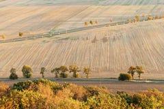 Wegen met droog gebied in de herfstkleuren royalty-vrije stock foto's