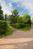 Wegen onder de bomen in het park Stock Foto's