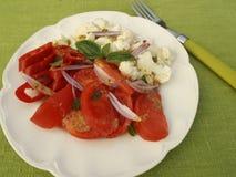 Wegetarian-Salat lizenzfreie stockfotos
