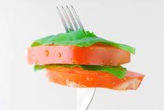 wegetarianin obrazy stock