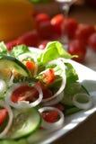 wegetarianin sałatkowy Zdjęcia Royalty Free