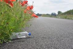 Weggeworfene Plastikflasche, die an der Wegseite unter Mohnblumenblume liegt Lizenzfreies Stockbild