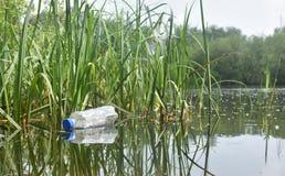 Weggeworfene Plastikflasche schmiegt sich in den Schilfen an der Seite von einem See an Stockbild