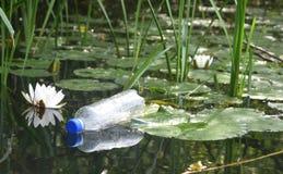 Weggeworfene Plastikflasche schmiegt sich in einem Lilienbett in einem See an Lizenzfreie Stockfotos