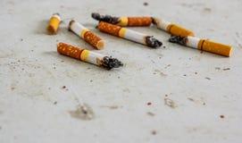 Weggeworfene Zigarettenkippen zerstreut Stockfotografie