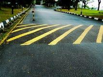 Wegnoteringen om weg op bulten op asfalt/teerweg te wijzen Stock Foto's