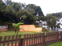 Wegreis aan Tanah Rata, Cameron Highlands Royalty-vrije Stock Afbeelding