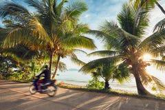 Wegreis op het tropische eiland royalty-vrije stock afbeelding