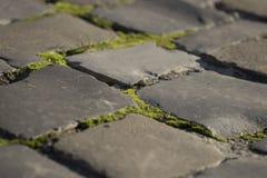 Wegtextuur met steenmetselwerk Stock Fotografie