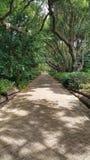 Wegweise durch die botanischen Gärten Stockfotografie