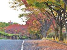 Wegweise im Herbst in Nagoya, Japan Stockbild