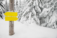 Wegweiser innen einen schneebedeckten Wald Lizenzfreies Stockbild