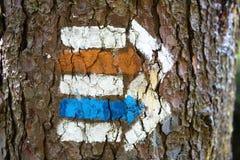 Wegweiserweg gezeichnet auf den Baum lizenzfreie stockfotos
