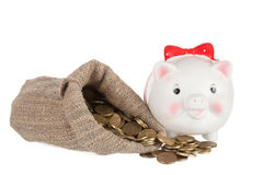 Weiß ein Schweinmünzenkasten und die große Tasche Stockfotos