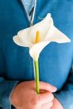 Weiß lilly auf Händen Lizenzfreie Stockfotos
