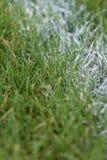Weiß malte Linie im Gras auf Sportfeld lizenzfreies stockbild