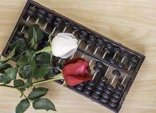 Weiß-, Rotrose lokalisiert und Abakus auf Bretterboden Lizenzfreies Stockbild