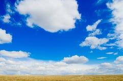 Weiß und Blau Lizenzfreie Stockfotos