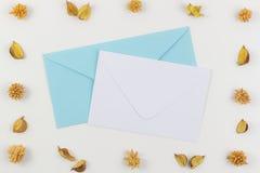 Weiß und Blau schlägt umgeben durch Trockenblumerahmen ein Draufsicht, flache Lage Lizenzfreie Stockfotos