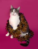 Weiß und Katze der getigerten Katze, die im Weihnachtslametta auf Rosa sitzt Lizenzfreie Stockfotografie