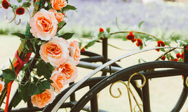 Weiß und Rosa stiegen Stockbilder
