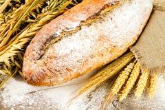 Weißbrot mit den Ährchen des Weizens, der Hafer und des Roggens Lizenzfreies Stockfoto