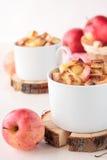 Weißbrotpudding mit Äpfeln und Zimt lizenzfreie stockfotografie