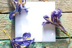 Weißbuch auf dem hölzernen Hintergrund mit Trockenblumen Iris Stockfotografie