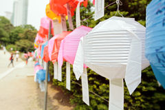 Weißbuchlaterne während des Lotoslaternefestivals Lizenzfreies Stockbild