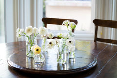 Weiße Anemonen und Ranunculus auf Esszimmertisch Stockfotografie