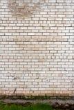 Weiße Backsteinmauer Lizenzfreie Stockfotos
