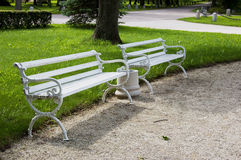 Weiße benchs Lizenzfreie Stockfotografie