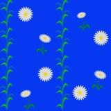 Weiße blaue Floratapete des Kamillenmusters Stockbilder