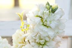 Weiße Blume auf Lager mit grünen Blättern lizenzfreies stockfoto