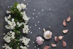 Weiße Blume des Frühsommers blüht mit rosa Knoblauch stockfotos
