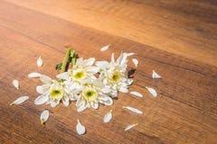Weiße Blumen auf dem Boden mit dem Blumenblatt Stockfoto