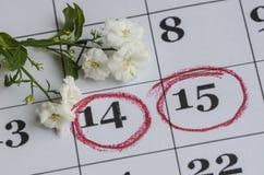 Weiße Blumen auf dem Menstruationskalender Stockbild