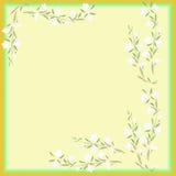 Weiße Blumen des Aquarellrahmens auf einem gelben Hintergrund Lizenzfreie Stockbilder