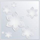 weiße Blumen des Hintergrundes Lizenzfreie Stockfotos