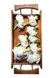 Weiße Blumen in einem hölzernen Behälter Stockfotografie