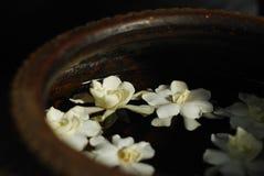 Weiße Blumen im Becken Lizenzfreie Stockfotos