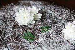Weiße Blumen mit einem grünen Blatt auf dunklem Hintergrund Stockfoto