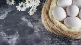 Weiße Blumen mit Hühnereien im Nest auf grauem Steinhintergrund Frühlings- und Ostern-Feiertagskonzept mit Kopienraum Lizenzfreies Stockbild