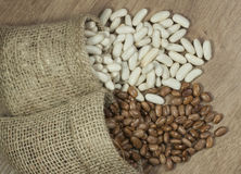 Weiße Bohnen und Pintobohnen Lizenzfreies Stockbild
