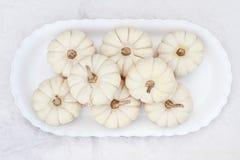 Weiße Boo Boo Pumpkins Stockbild