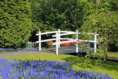 Weiße Brücke im holländischen Garten Lizenzfreie Stockfotos