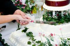 Weiße Braut stockbild