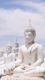 Weiße Buddha-Statue Stockfoto